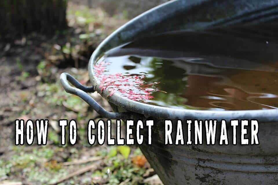 Collecting Rainwater – Storage Options For Your Prepping Plans