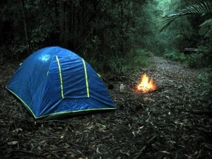 Prepper's Will - Practice before going off-grid