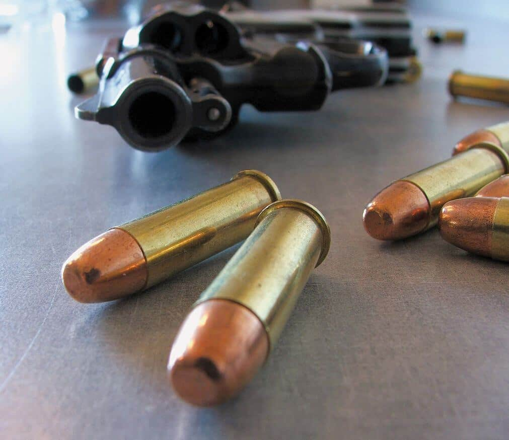 Prepper's Will - Guns and ammo will keep you safe
