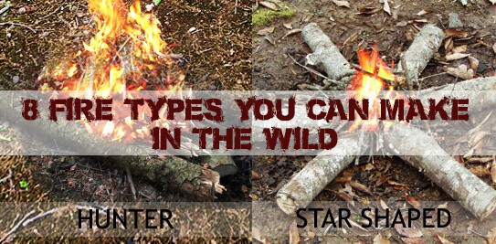 Making The Right Fire Type In The Wild