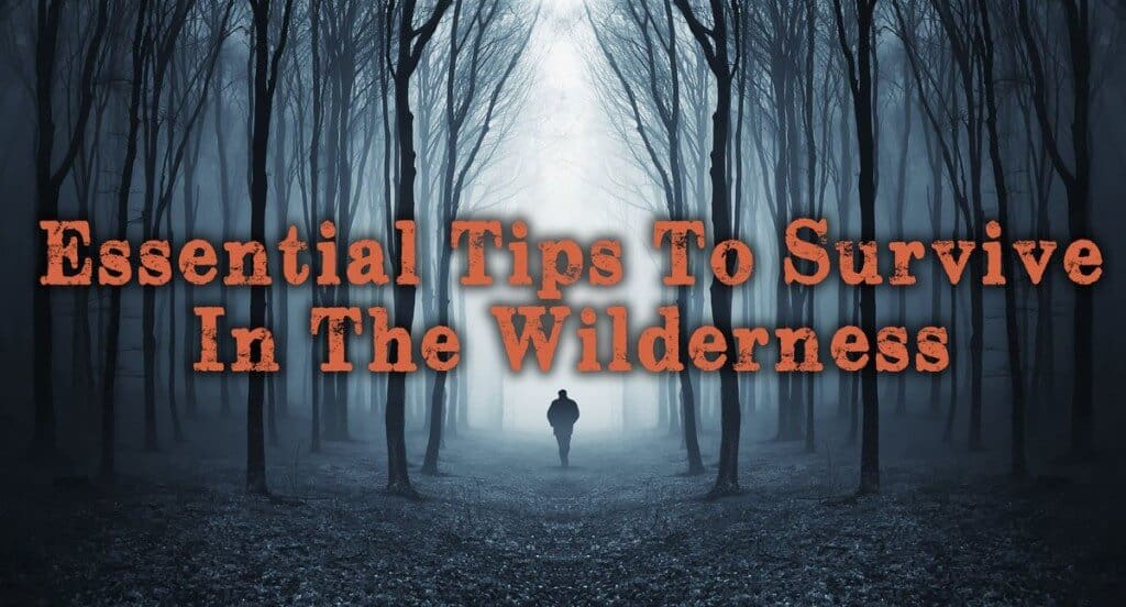 15 Essential Tips For Surviving In The Wilderness