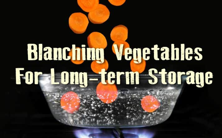 Blanching Vegetables For Long-term Storage