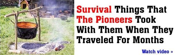 Survival Lessons from The Pioneers