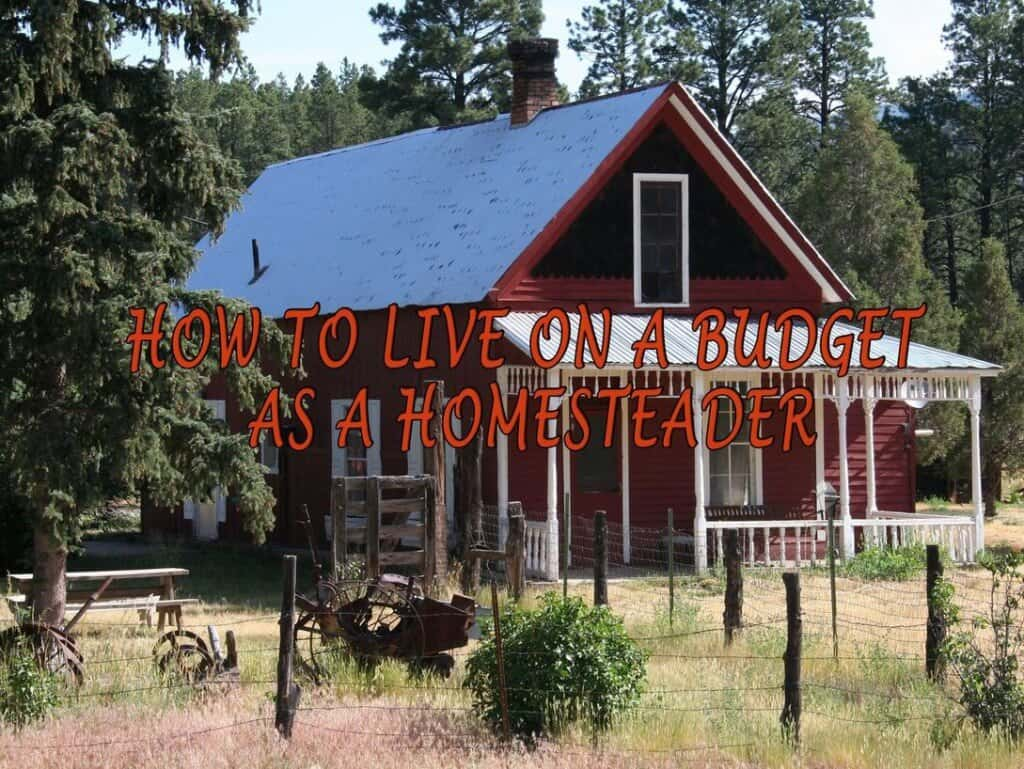 How To Live On A Budget As A Homesteader