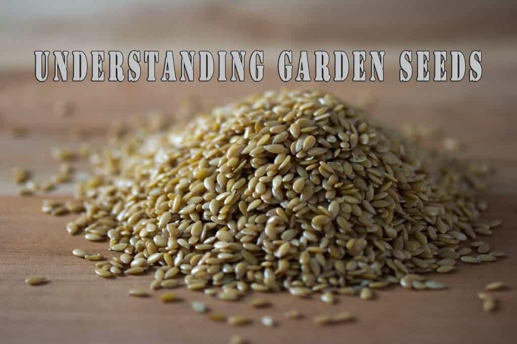Understanding Garden Seeds For Self-sufficiency
