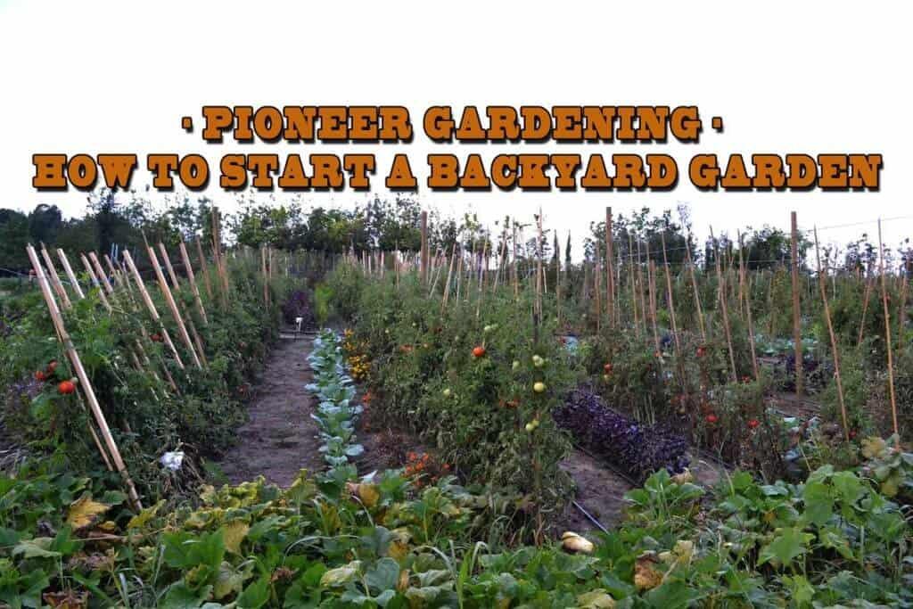 Pioneer Gardening - How To Start A Backyard Garden