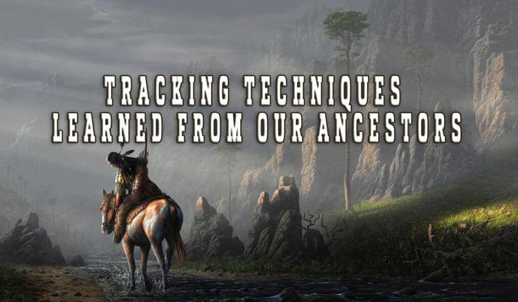 Tracking Techniques Learned From Our Ancestors