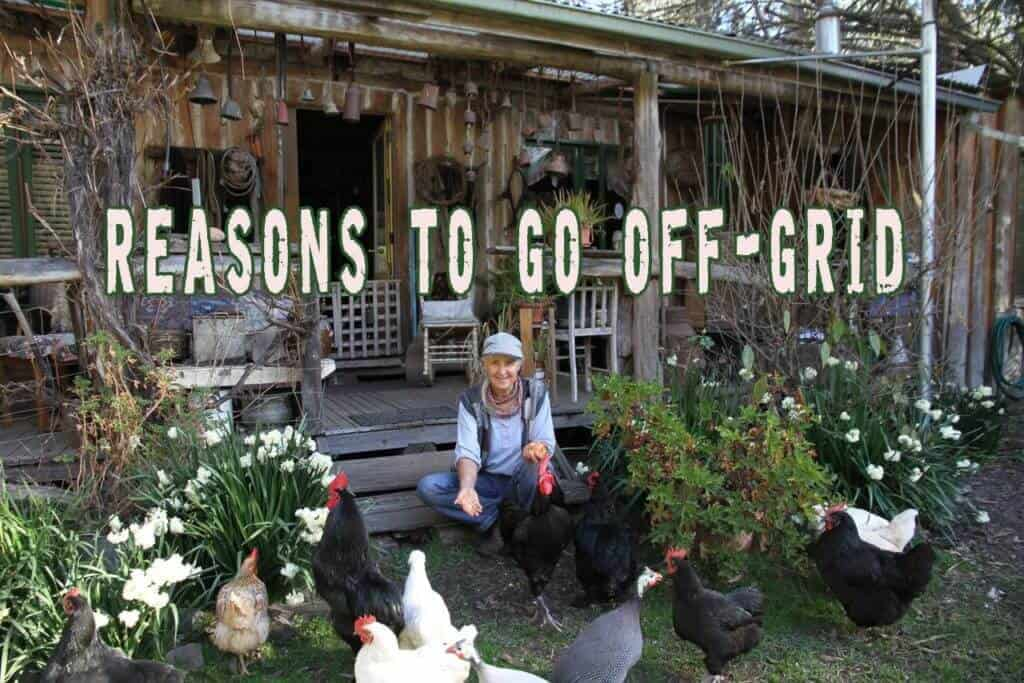Reasons To Go Off-grid