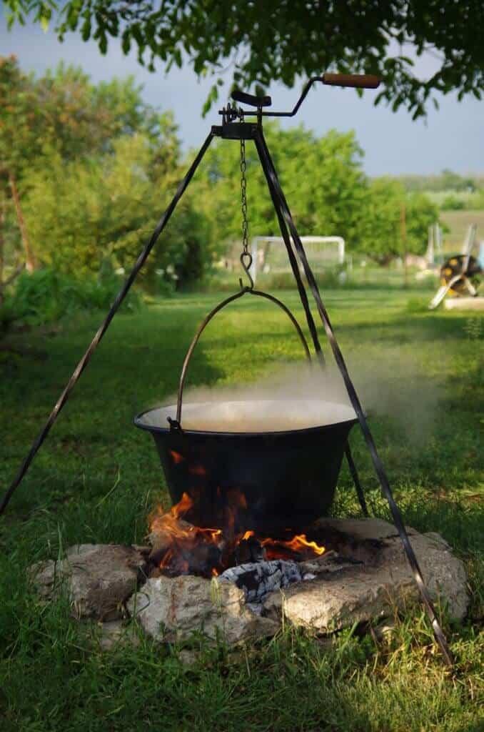 Swamp Cabbage Stew was one of the civil war era foods