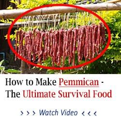 update pemican3