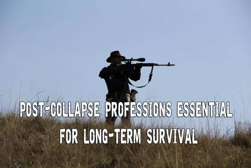 Post collapse professions essential for long term survival