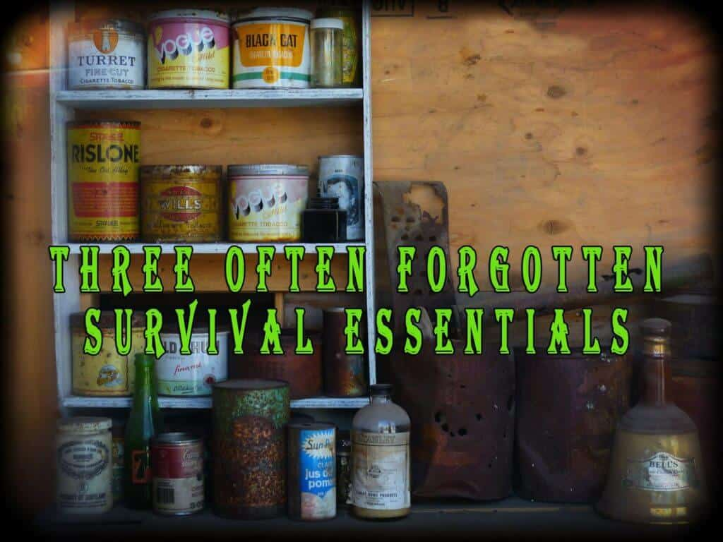 Three Often Forgotten Survival Essentials