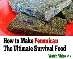 The Lost Ways of making Pemmican