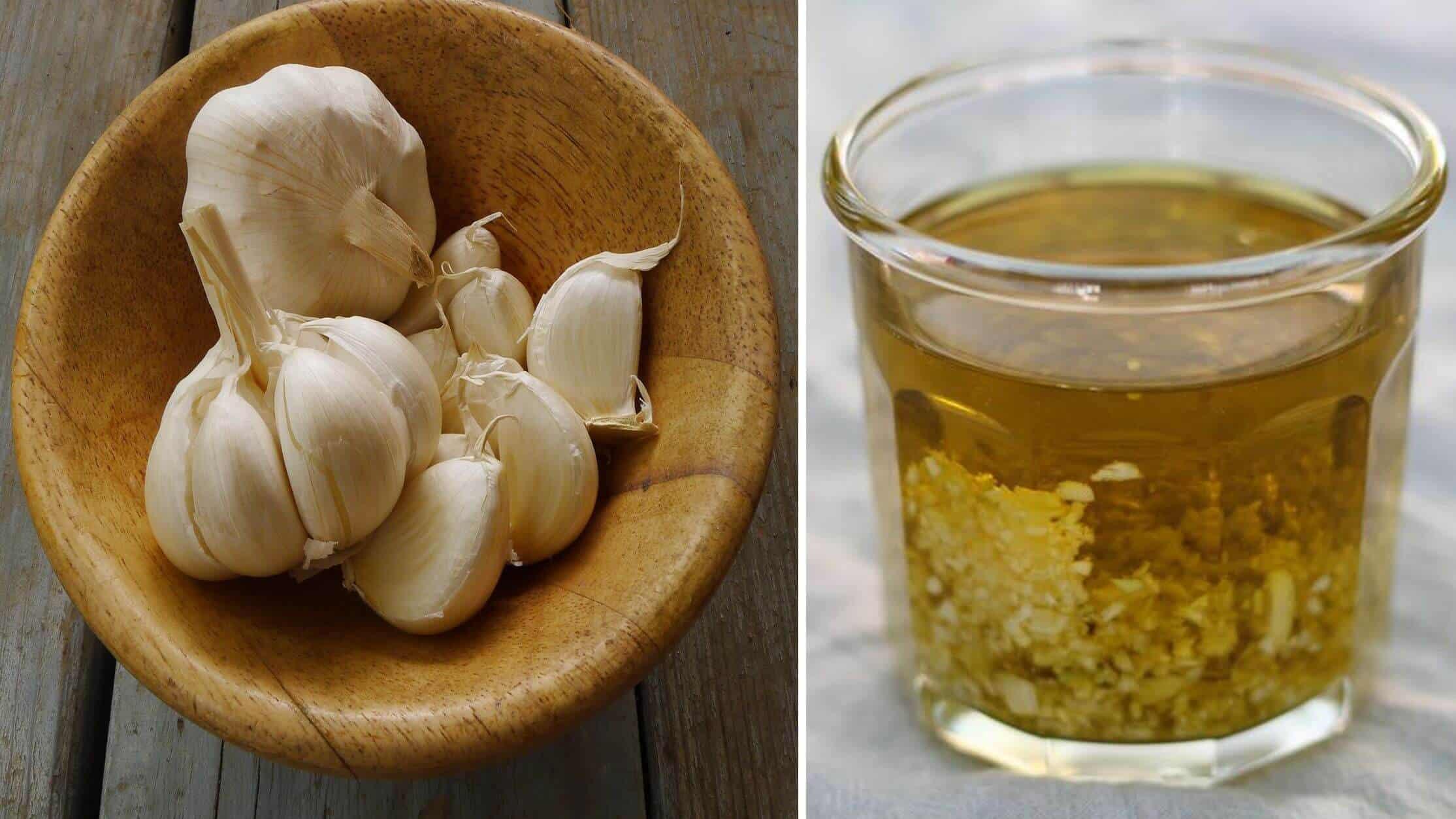 How to make antibiotic garlic tincture pw