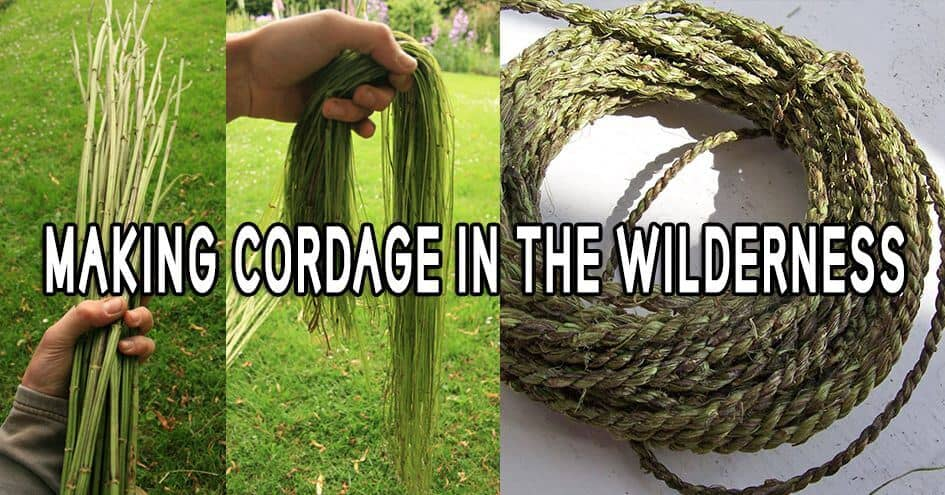 Making Cordage in the Wilderness