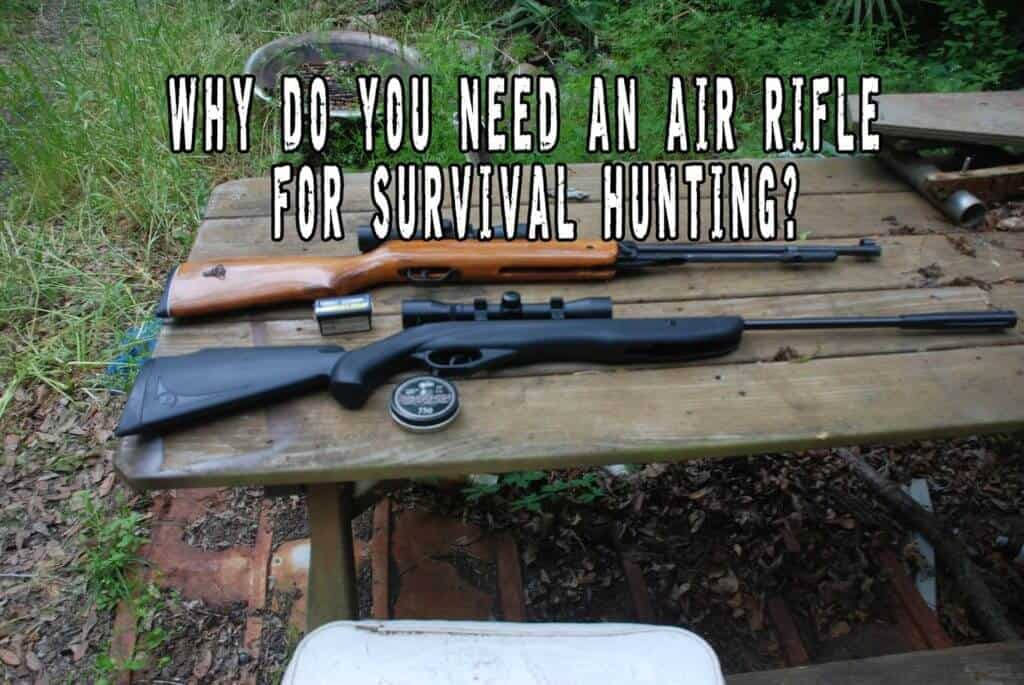 Why Do You Need An Air Rifle For Survival Hunting?