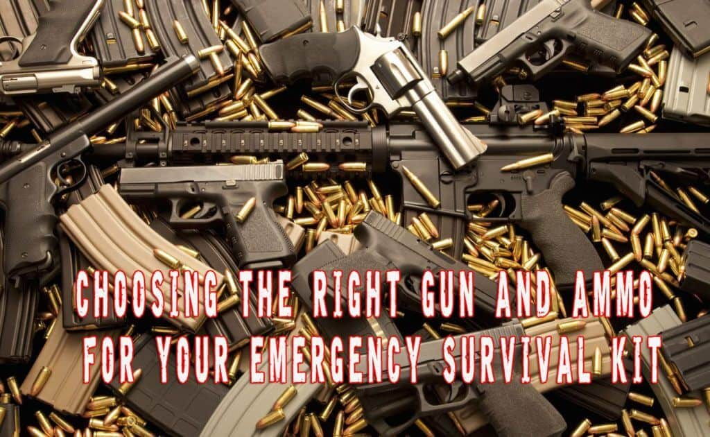 Choosing the Right Firearm and Ammo for Your Emergency Survival Kit