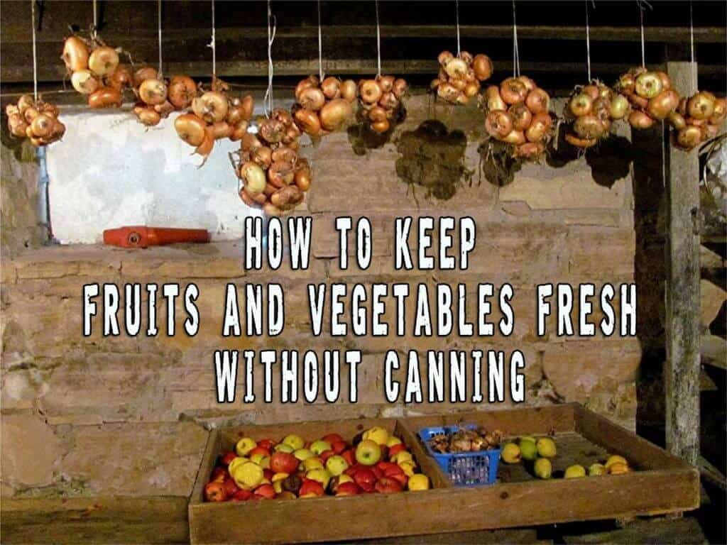 How to Keep Fruits and Vegetables Fresh Without Canning