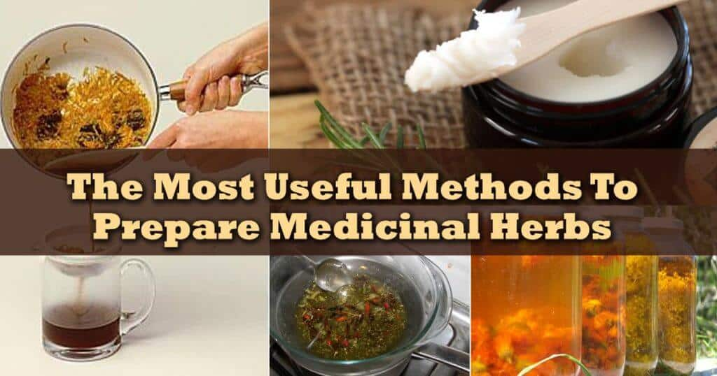 The Most Useful Methods To Prepare Medicinal Herbs