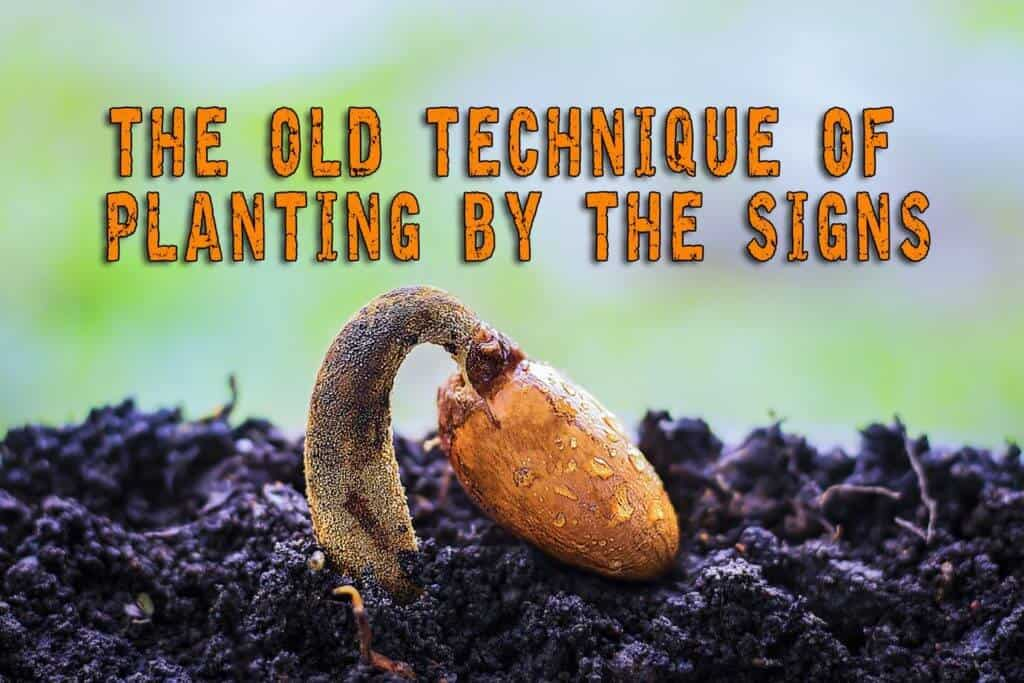The Old Technique Of Planting By The Signs