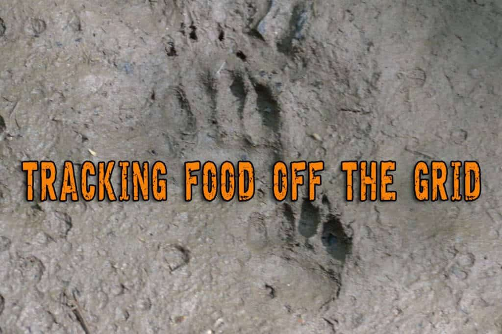 Tracking Food Off The Grid