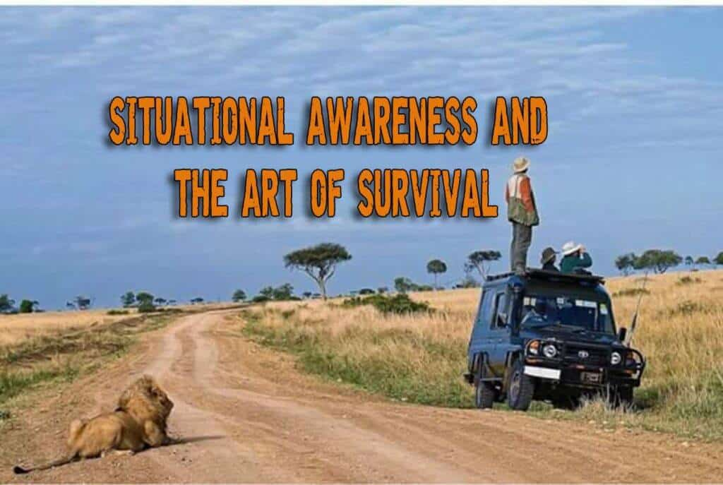 Situational Awareness And The Art of Survival