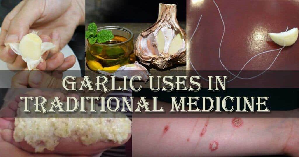 Garlic Uses in Traditional Medicine