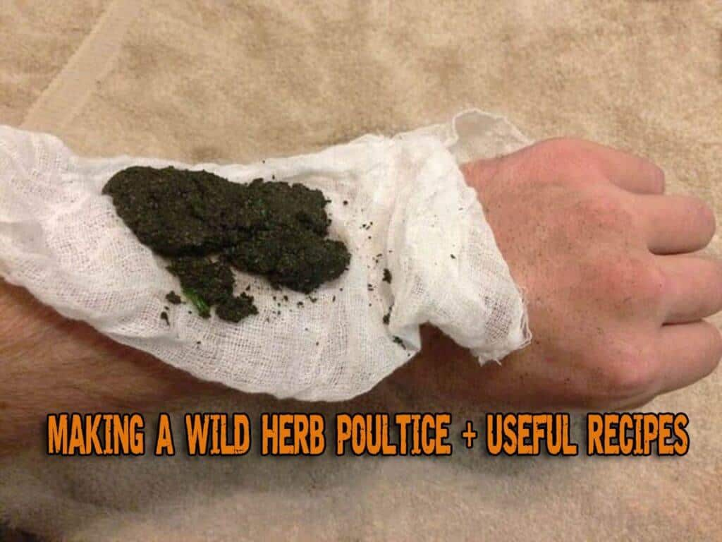 Making A Wild Herb Poultice And A Few Useful Recipes