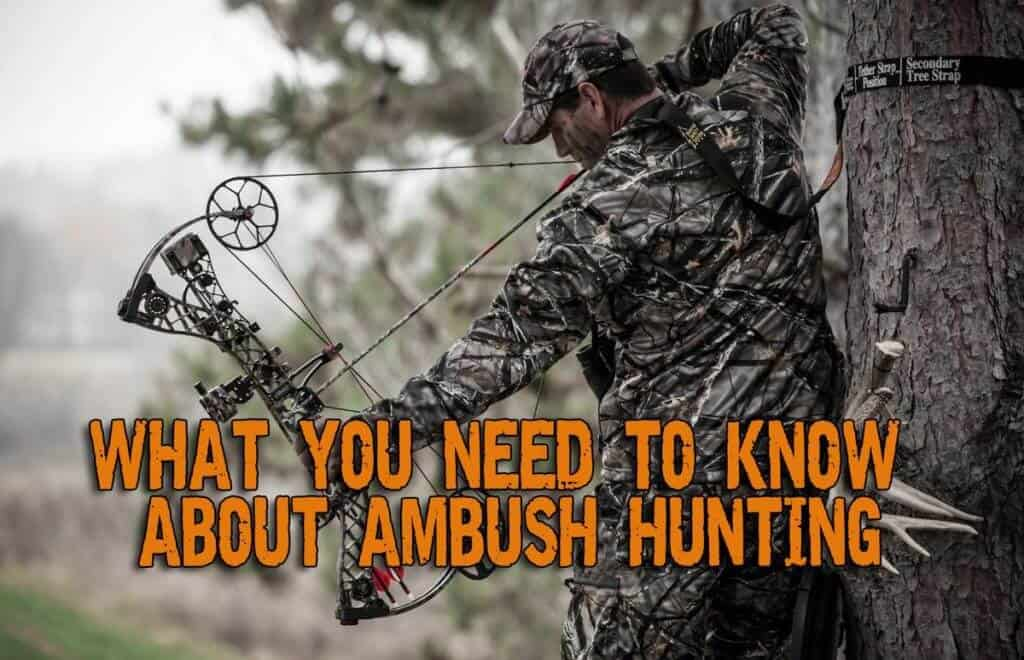 Ambush Hunting - What You Need To Know About It