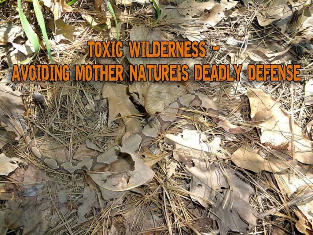 Toxic Wilderness - Avoiding Mother Nature's Deadly Defense