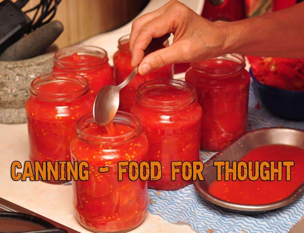 Canning - Food For Thought