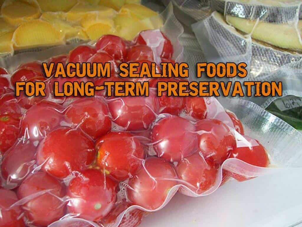 Long-Term Food Preservation – Vacuum Sealing and Freezing Foods