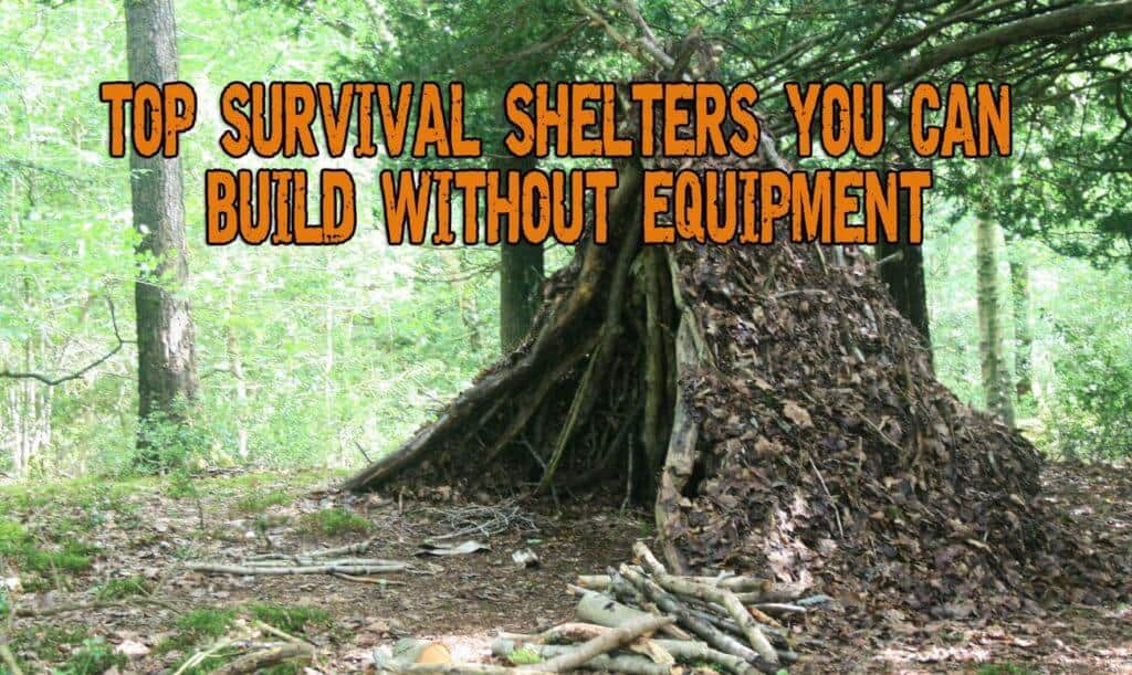 Top Survival Shelters You Can Build Without Equipment
