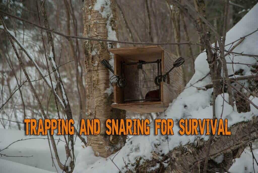 Trapping and Snaring for Survival