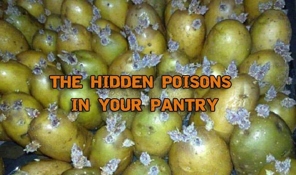 The Hidden Poisons In Your Pantry