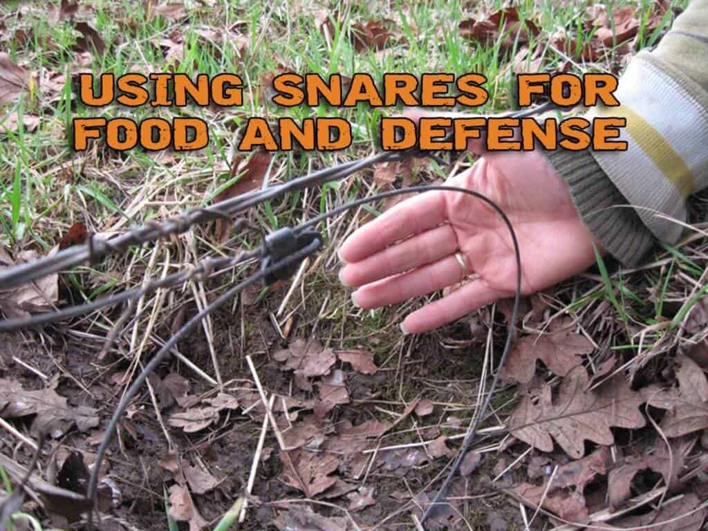 Using Snares For Food And Defense