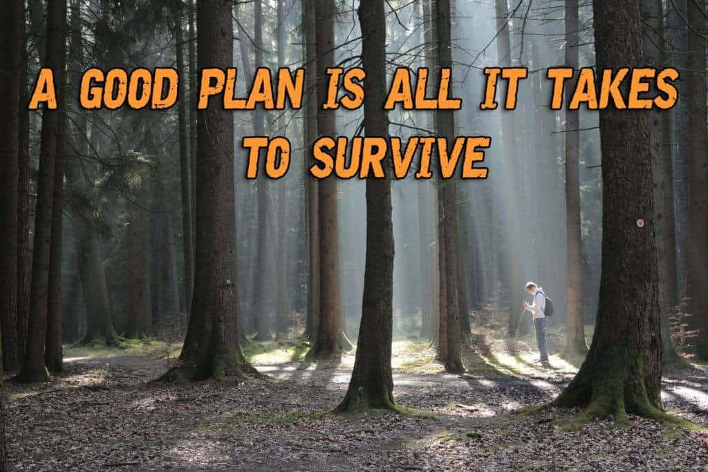 A Good PLAN Is All It Takes To Survive