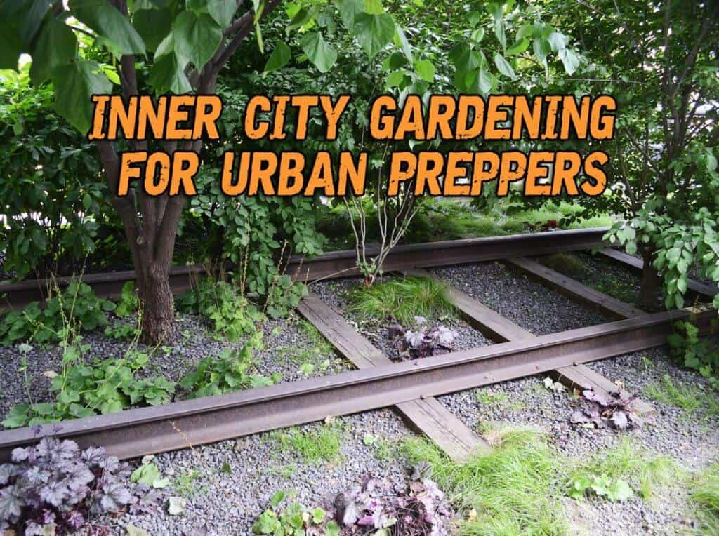 Inner City Gardening For Urban Preppers