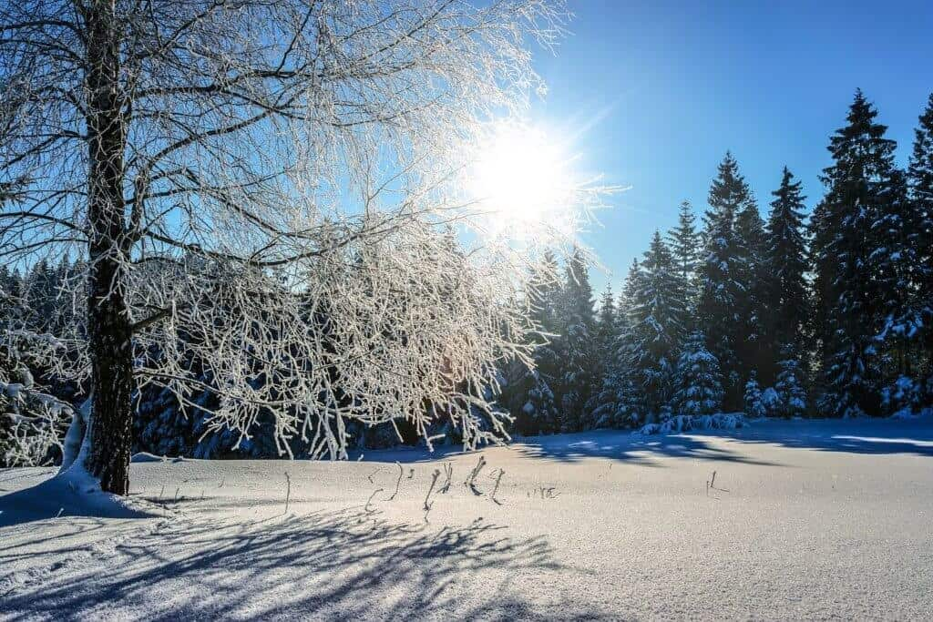 Cold Injuries Management and snow blindness