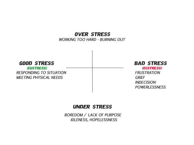 Psychology of survival – Types of stress