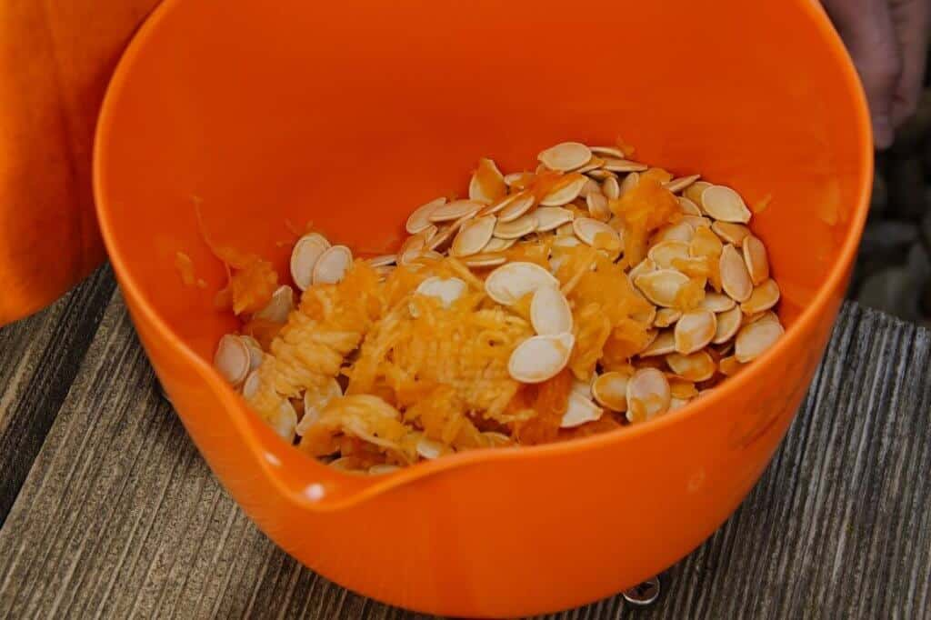 Saving Garden Seeds - Pumpkin seeds