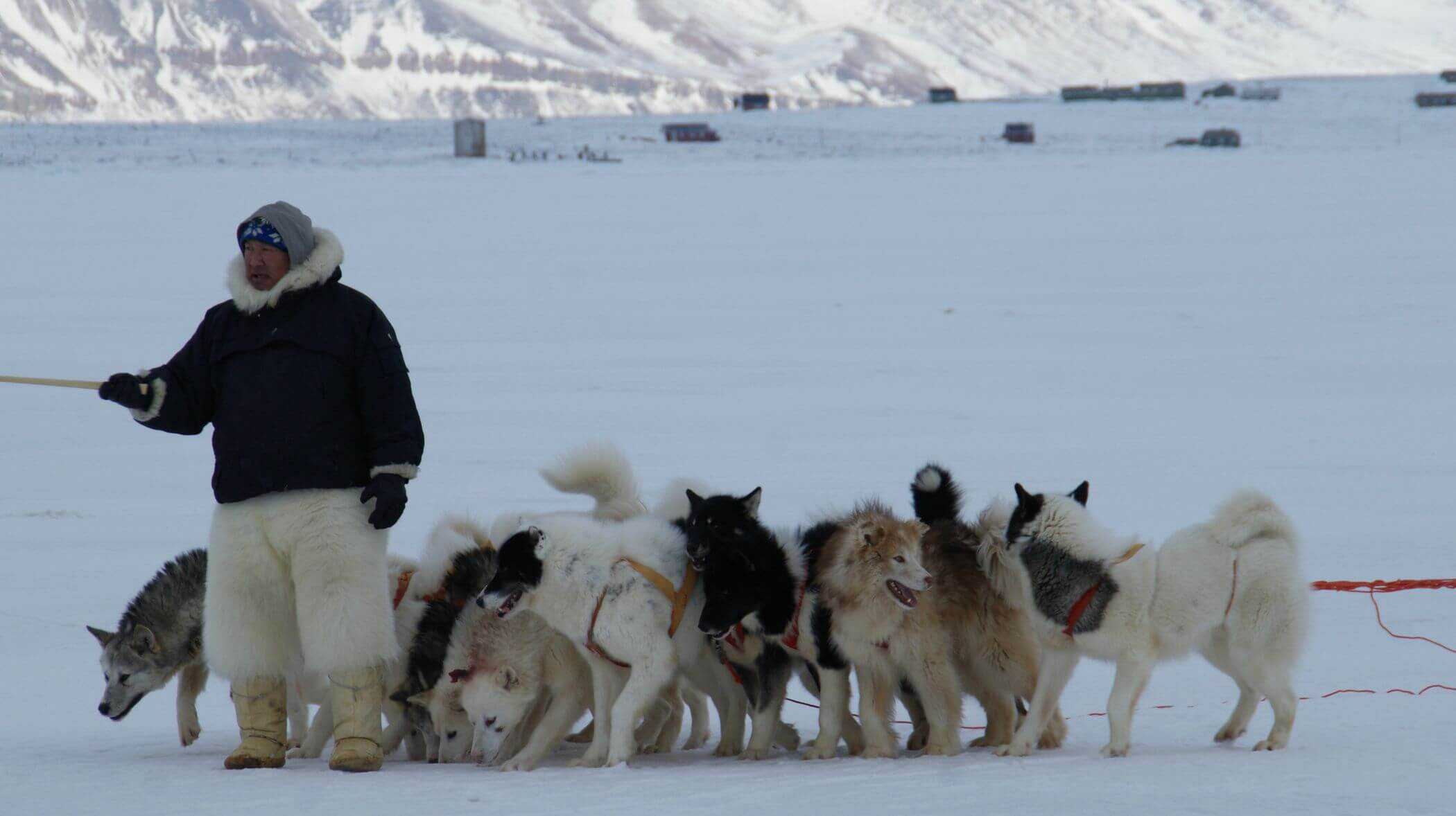 Eskimos and Arctic Survival