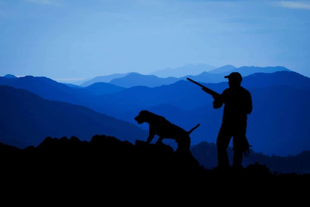 Hunting Elk with dog
