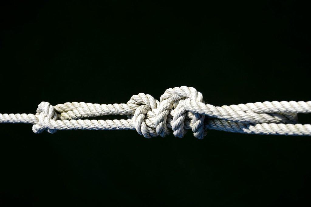 Learning Knots