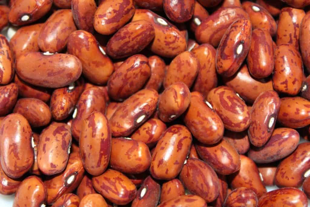 Beans Are A Good Source Of Protein