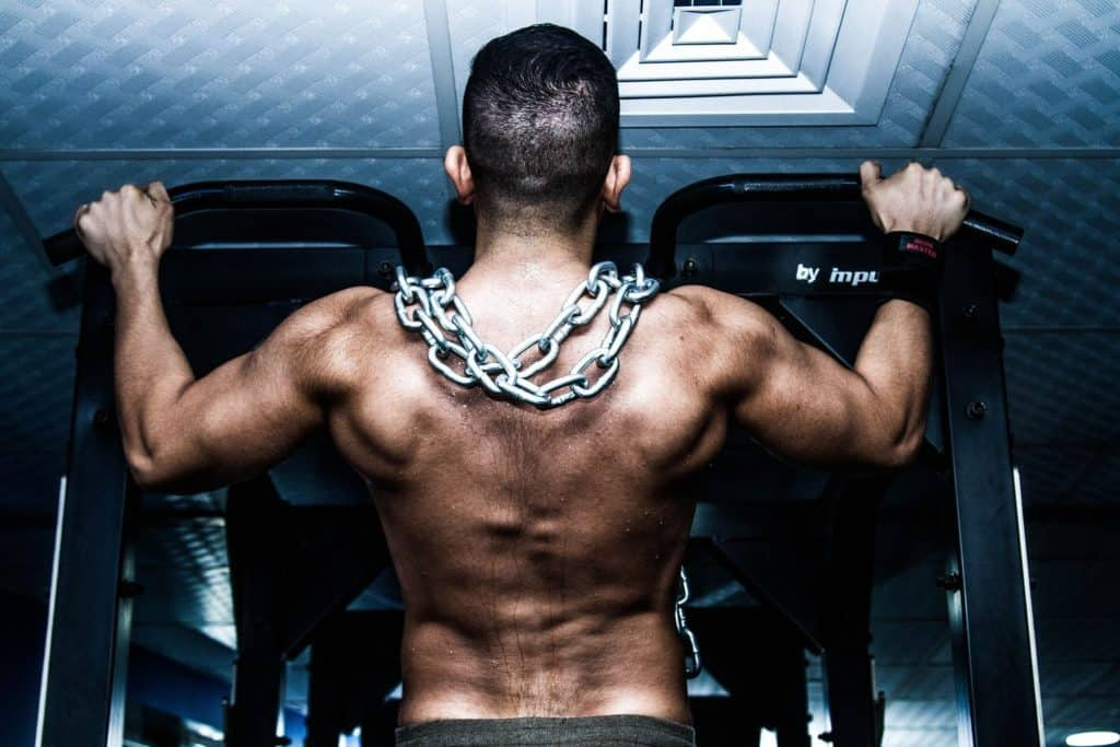 Protein Helps Muscle Gain