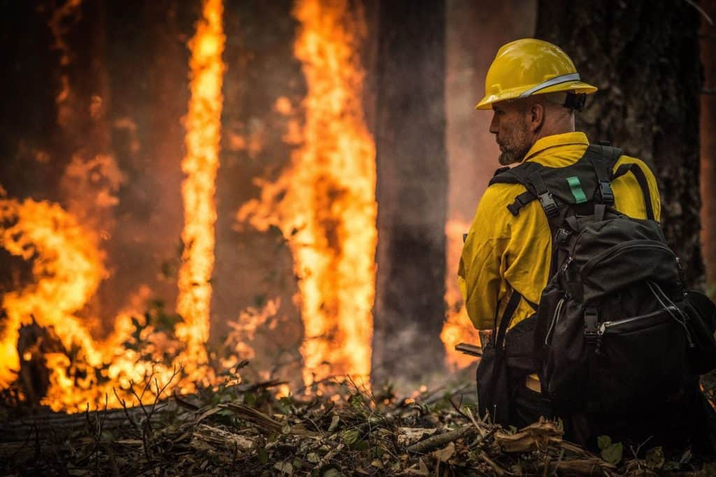 Fighting Forest Fires