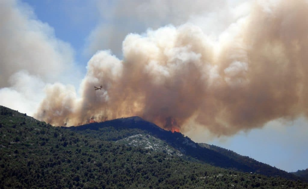 How Wildfire Starts
