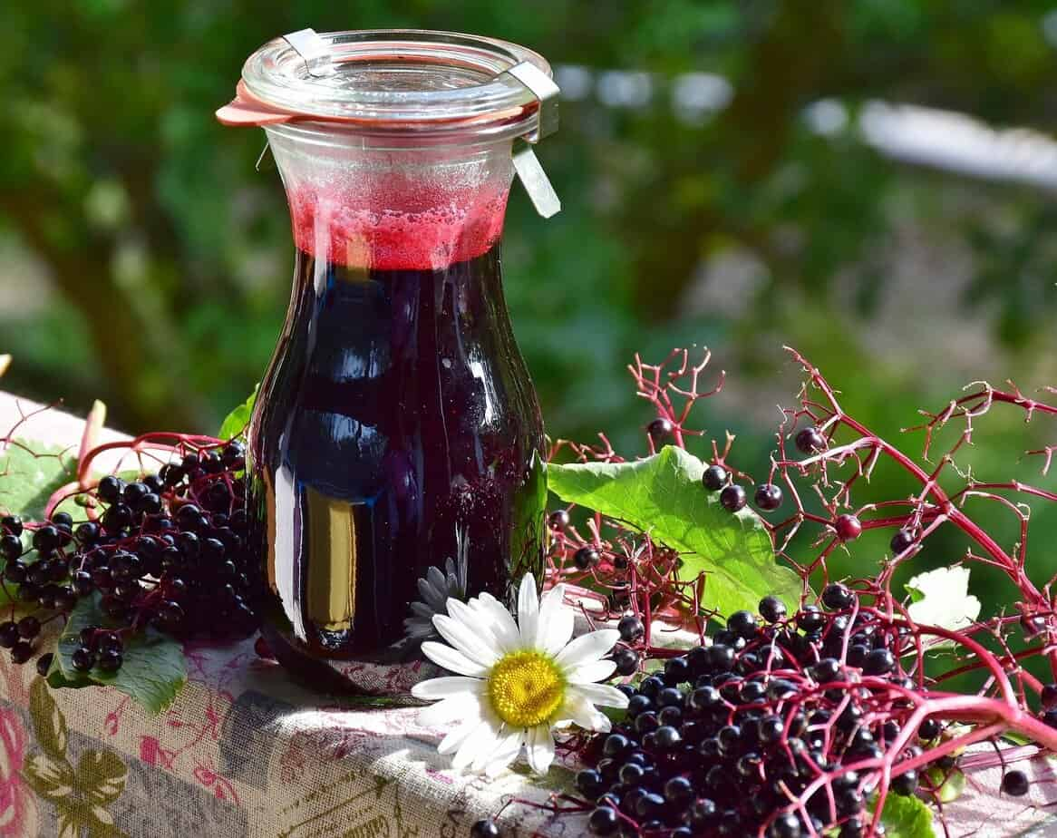 Finding And Using Wild Fruit In Your Area