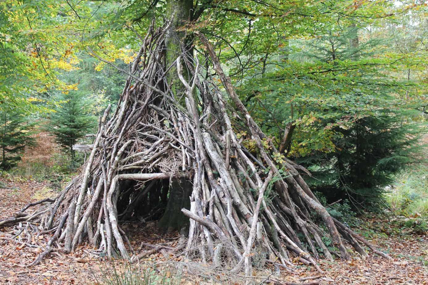 Tips To Make A Backwoods Shelter